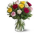 A Dozen Mixed Roses in Milford MA, Francis Flowers, Inc.