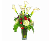 Christmas Callas in Seattle WA, Topper's European Floral Design