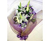 Love in Casablanca in Mississauga ON, Orchid Flower Shop
