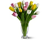 15 Mixed Tulips in Bound Brook NJ, America's Florist & Gifts