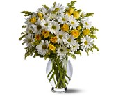 Teleflora's Daisy Days Deluxe in Oklahoma City OK, Array of Flowers & Gifts