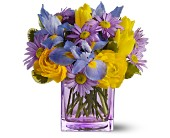 Teleflora's Spring Sunlight in Hilton NY, Justice Flower Shop