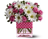 Teleflora's Polka Dots and Posies in Watertown NY, Sherwood Florist