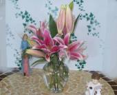 Lovely Lilies, picture
