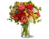 Citrus Kissed in New York NY, Fellan Florists Floral Galleria
