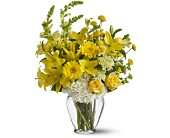 Summer Breeze in Houston TX, Colony Florist