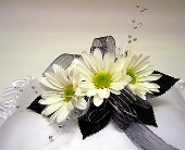 Three Daisies Corsage in Indianapolis IN, Gillespie Florists