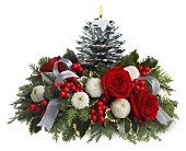 Teleflora's Silver Pinecone Bouquet in New Britain CT, Weber's Nursery & Florist, Inc.