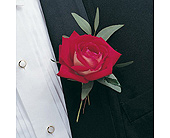 Red Rose Boutonniere in Albany NY, Emil J. Nagengast Florist