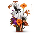 Teleflora's Ghostly Greetings in Shoreview MN, Hummingbird Floral