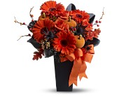 Jack-O'-Lantern Blooms in Maple ON, Jennifer's Flowers & Gifts