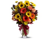 Teleflora's Glorious Autumn in Maple ON, Jennifer's Flowers & Gifts