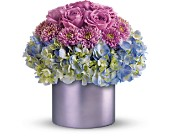 Teleflora's Lovely in Lavender in Jamison PA, Mom's Flower Shoppe
