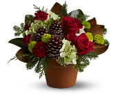 Countryside Christmas in Dallas TX, Petals & Stems Florist