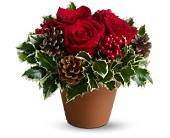 Holly Holiday in Dallas TX, Petals & Stems Florist