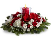 Light up the Holidays in Dallas TX, Petals & Stems Florist