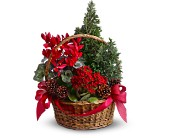 Tannenbaum Basket in Edmonton AB, Petals For Less Ltd.