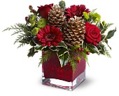Teleflora's Cozy Christmas in Dallas TX, Petals & Stems Florist