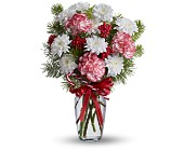 Peppermint Pretty in Dallas TX, Petals & Stems Florist