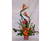 Tropical Charm in The Villages FL, The Villages Florist Inc.