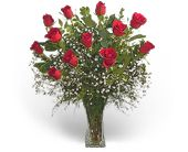 Precious Roses in Watertown, Massachusetts, Cass The Florist, Inc.
