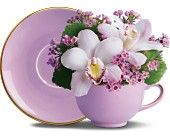 Orchid Teacup Bouquet by Teleflora in New Britain CT, Weber's Nursery & Florist, Inc.