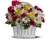 Daisy Dreams Basket in San Clemente CA, Beach City Florist