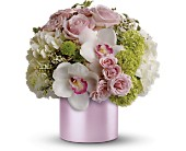 Teleflora's Love Song in Maple ON, Jennifer's Flowers & Gifts