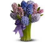 Fragrant Hyacinth in San Clemente CA, Beach City Florist