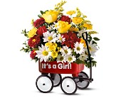 Teleflora's Baby's First Wagon - Girl in Royal Oak MI, Rangers Floral Garden