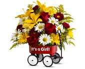 Teleflora's Baby's First Wagon - Girl - Deluxe in Orlando FL, Elite Floral & Gift Shoppe