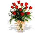 Classic Dozen Red Roses Dressed for the Holidays in St. Louis MO, Walter Knoll Florist