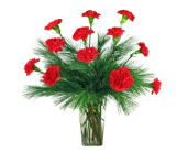 Christmas Carnations in Indianapolis IN, 317 Flowers