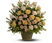 Teleflora's Rose Remembrance in Burlington NJ, Stein Your Florist