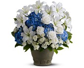 Teleflora's Tranquil Seas in Fort Wayne IN, Flowers Of Canterbury, Inc.