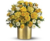 Teleflora's Golden Sunshine Bouquet in El Paso, Texas, Blossom Shop