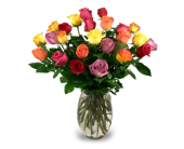 Two Dozen Assorted Roses in Indianapolis IN, 317 Flowers