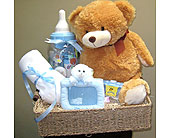 Beary Blessings Basket in Toronto ON, The Flower Nook
