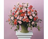 Pink and Peach Carnation Urn in West Bloomfield MI, Happiness is...Flowers & Gifts