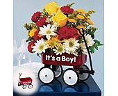 TN Baby's First Wagon Bouquet Girl in St. Louis MO, Walter Knoll Florist