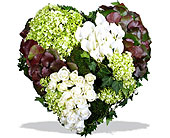 Healing Heart in Norwalk, Connecticut, Bruce's Flowers & Greenhouses