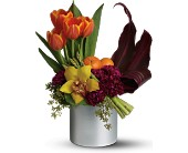 Teleflora's Top Chef Kitchen Connoisseur in Aston PA, Wise Originals Florists & Gifts