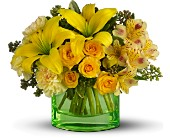 You are My Sunshine by Teleflora in Salt Lake City UT, Especially For You