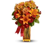 Teleflora's Orange Crush in flower shops MD, Flowers on Base