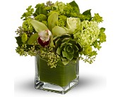 Teleflora's Rainforest Bouquet in Mount Morris MI, June's Floral Company & Fruit Bouquets