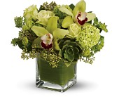 Teleflora's Rainforest Bouquet -  Deluxe in Tiburon CA, Ark Angels Flowers