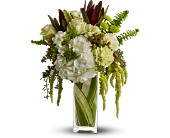 Teleflora's Nature's Kiss in Laurel, Maryland, Rainbow Florist & Delectables, Inc.