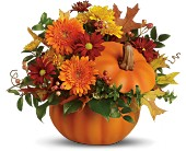 Teleflora's Somethin' Pumpkin in flower shops MD, Flowers on Base