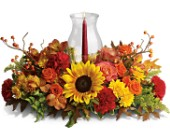 Delight-fall Centerpiece in Edmonton AB, Petals For Less Ltd.