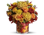 Teleflora's Golden Leaves in flower shops MD, Flowers on Base